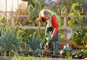Woman working in the community garden